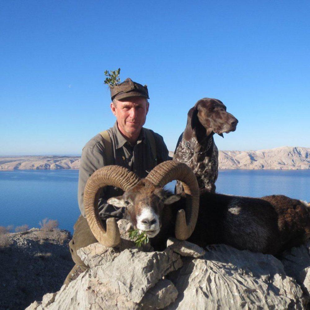 Mouflon-Ram-hunting-2