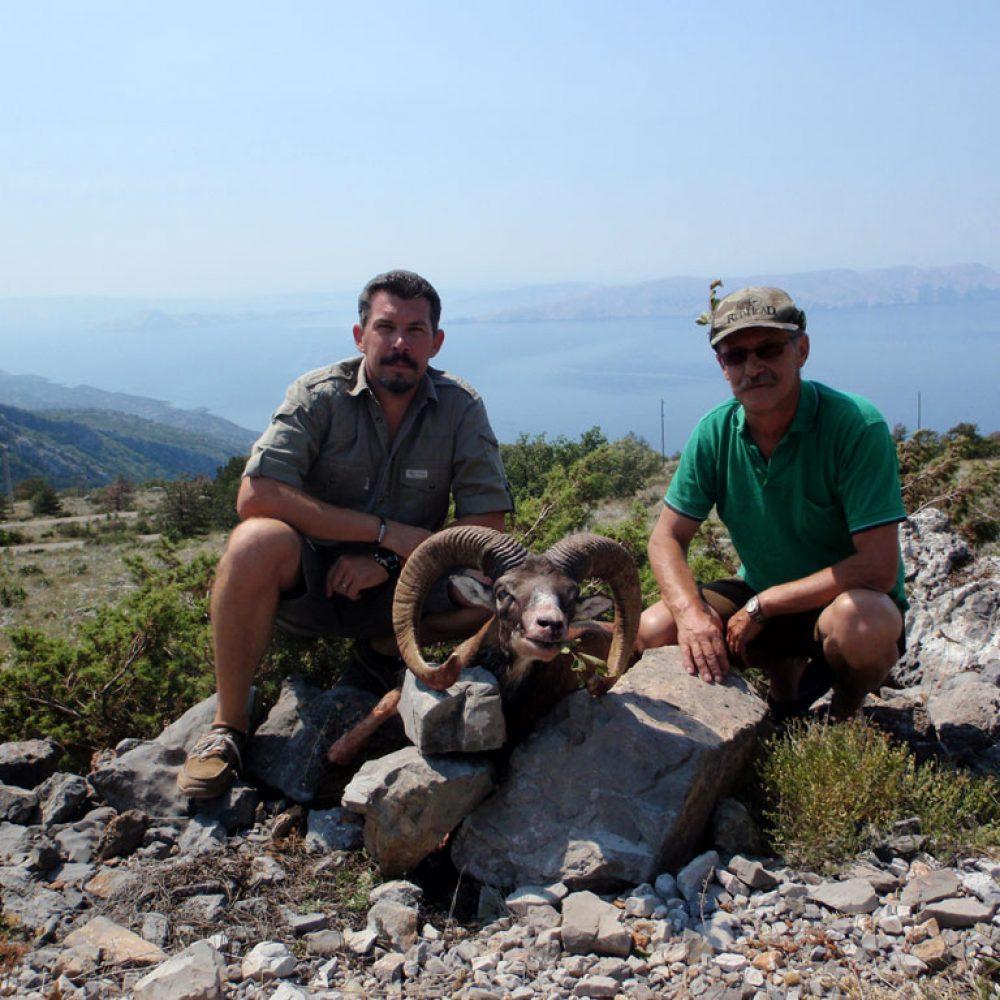 Mouflon-Ram-hunting-3