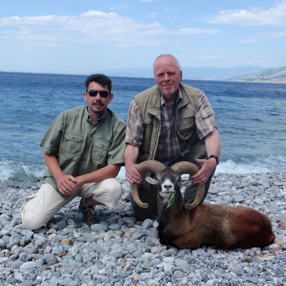 Mouflon-Ram-hunting4